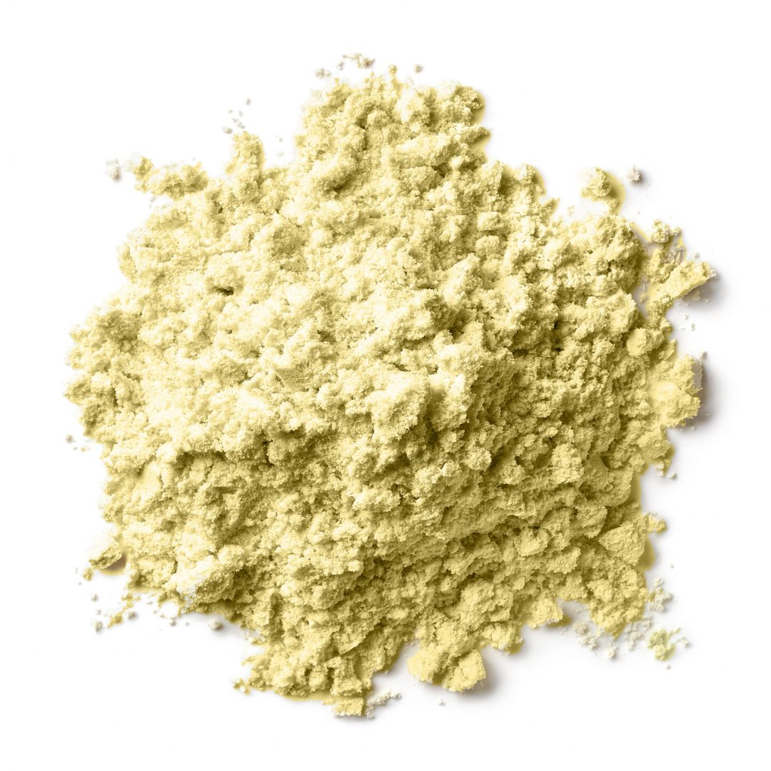 GYMSECT SCULPT Unflavoured Cricket Protein Powder